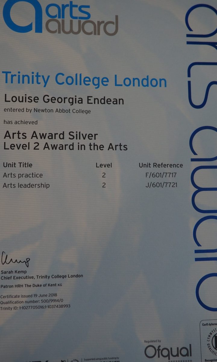 Silver Arts Award Newton Abbot College Ofsted Good Secondary School 2